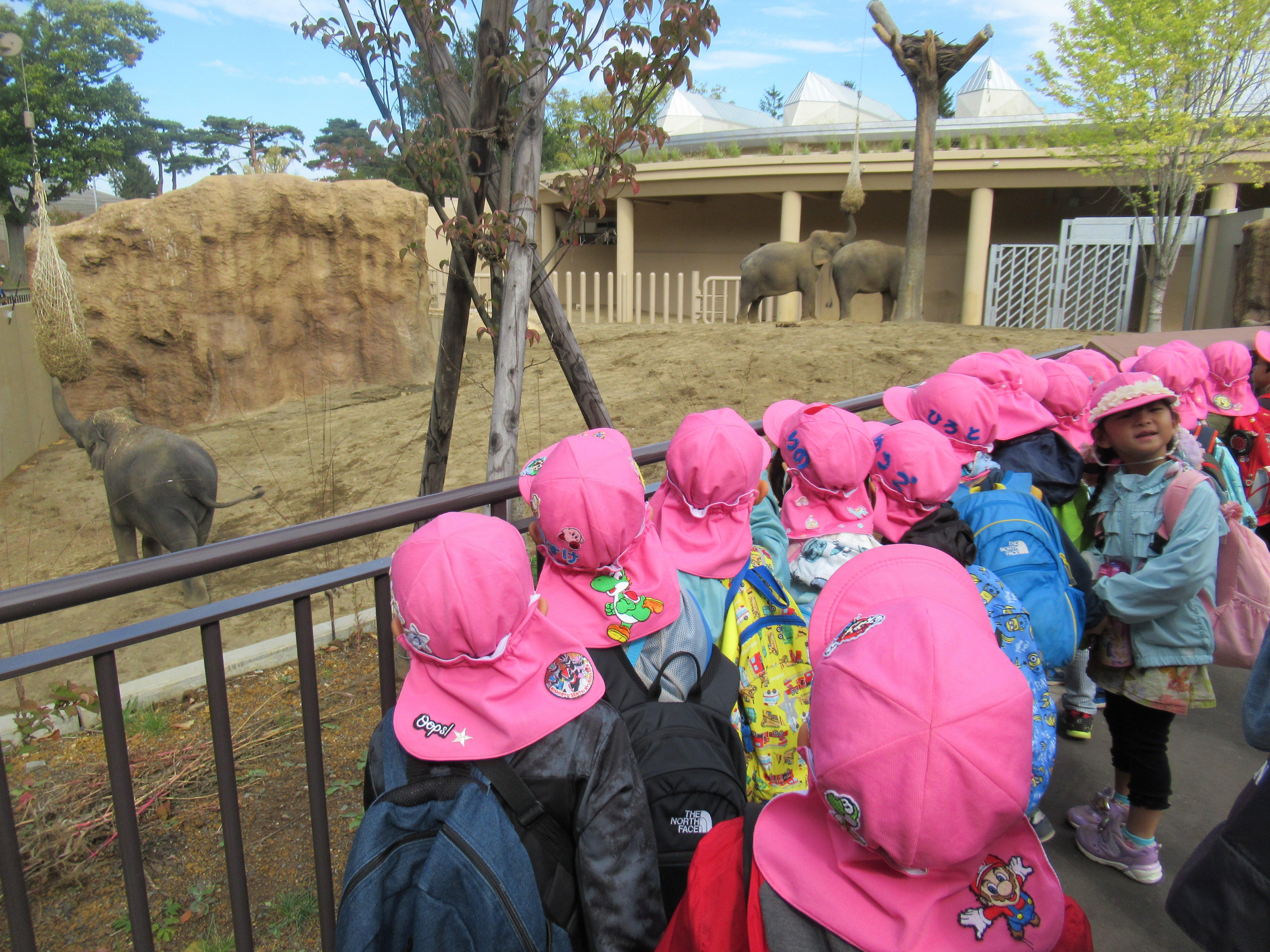 動物園遠足